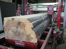 Ленточная пилорама Serra Bavaria SL 130i