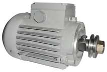 Электродвигатель АЗЛП Тайга в сборе