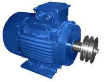 Электродвигатель Т4 в сборе